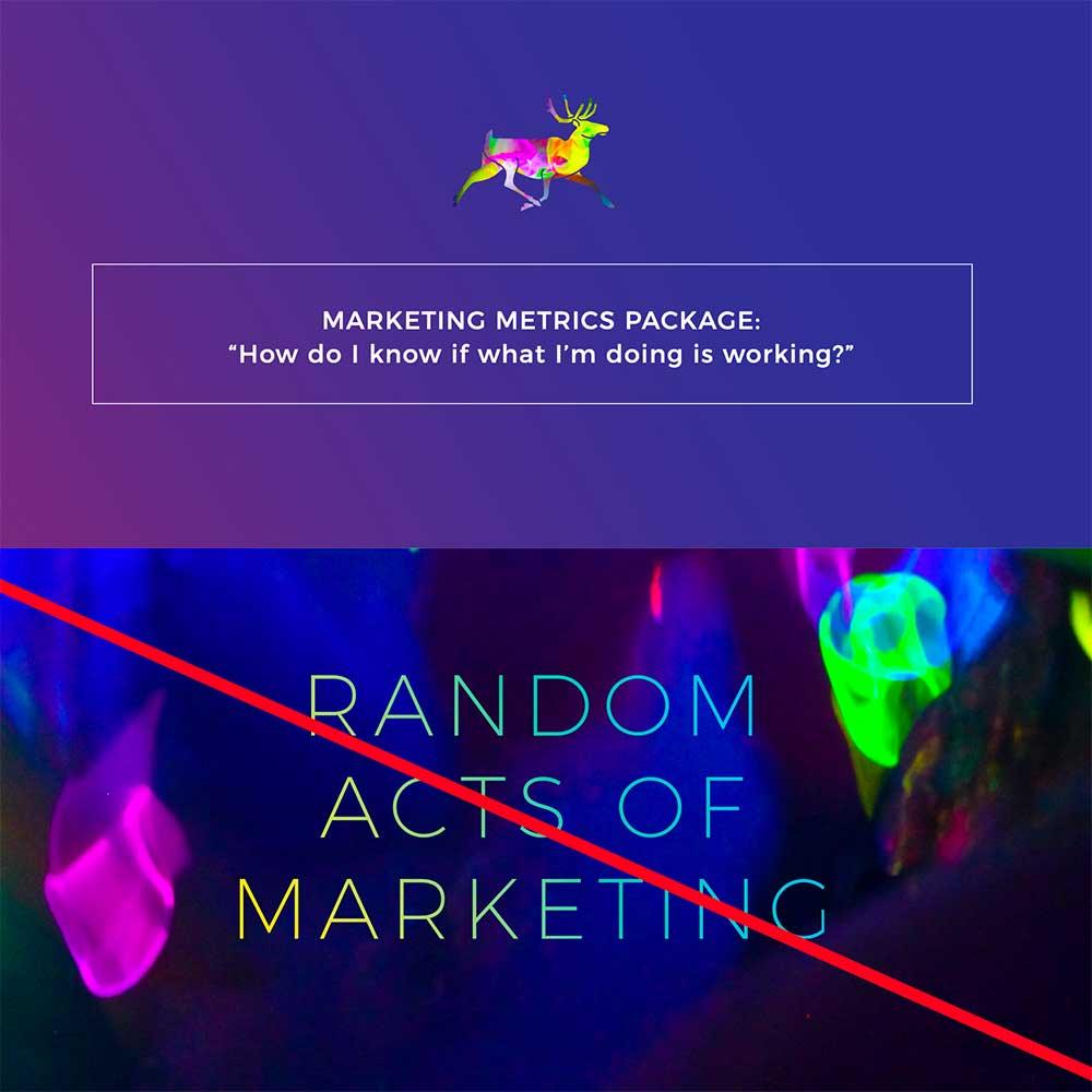 Neon Reindeer Marketing, Marketing Metrics Package